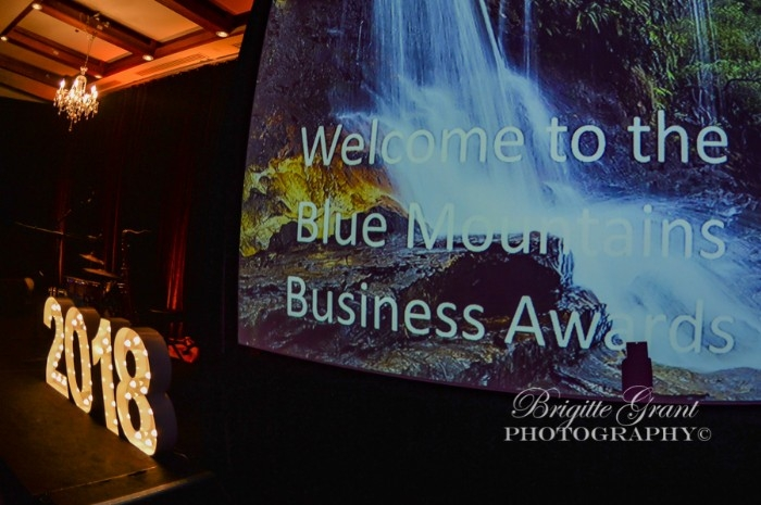 2018 Business Awards Night - Brigitte Grant Photography